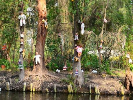 10 khu rừng ma trên thế giới khiến du khách ớn lạnh