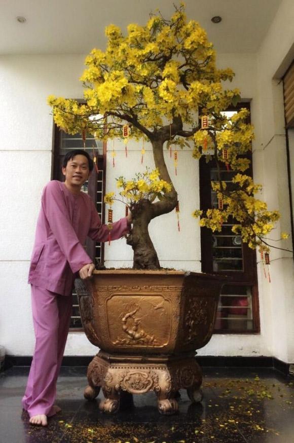 Hoài Linh ôm cây cảnh nửa tỷ đi thi, bất ngờ đạt giải thưởng  4