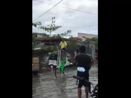 Mùa mưa ngập khắp phố phường cũng chẳng lo chi khi đã có xe đạp